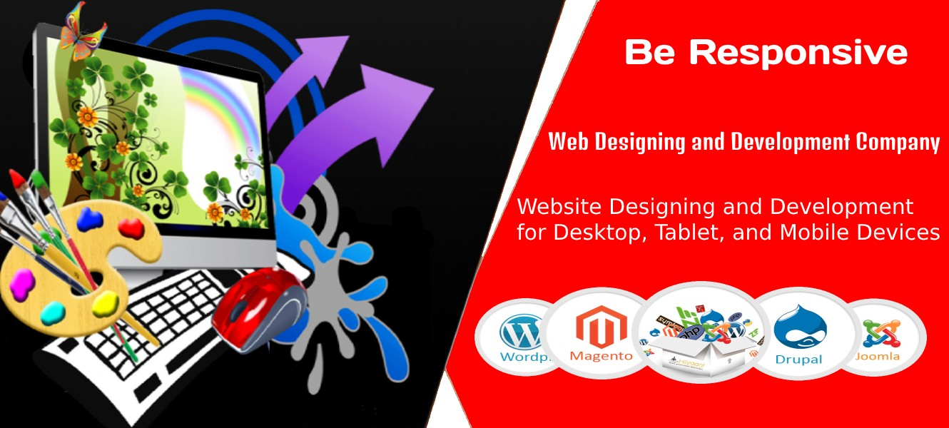 Website Designing, Web Development Company in Delhi, Noida, Lucknow - DMPS